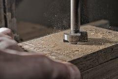 Διάτρηση του δρύινου ξύλου στοκ εικόνα με δικαίωμα ελεύθερης χρήσης
