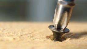 Διάτρυση μιας βίδας στο ξύλο απόθεμα βίντεο