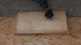 Διάτρυση της μεγάλης τρύπας στην ξύλινη σανίδα για το σπίτι πουλιών απόθεμα βίντεο