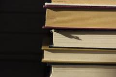 Διάφορα βιβλία βρίσκονται το ένα στο άλλο Στοκ Εικόνες