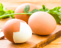 Διάφορα βρασμένα αυγά Στοκ Εικόνα