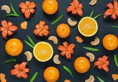 Διάφορα εσπεριδοειδή και πορτοκαλιοί κρίνοι σε ένα μαύρο υπόβαθρο Στοκ Εικόνες