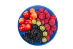 Διάφορα θερινά φρέσκα μούρα σε ένα κύπελλο στον αγροτικό ξύλινο πίνακα Αντιοξειδωτικοοι, detox διατροφή, οργανικά φρούτα r στοκ φωτογραφία