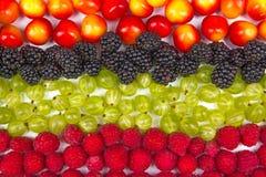 Διάφορα θερινά φρέσκα μούρα σε ένα κύπελλο στο απομονωμένο λευκό Αντιοξειδωτικοοι, detox διατροφή, οργανικά φρούτα Τοπ όψη στοκ φωτογραφίες με δικαίωμα ελεύθερης χρήσης
