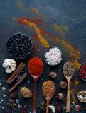 Διάφορα ινδικά καρυκεύματα, καρύδια και χορτάρια στα ξύλινα κουτάλια και τα κύπελλα μετάλλων Στοκ Φωτογραφία