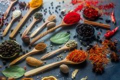 Διάφορα ινδικά καρυκεύματα στα ξύλινα κουτάλια και τα κύπελλα μετάλλων, τους σπόρους, τα χορτάρια και τα καρύδια στοκ φωτογραφία