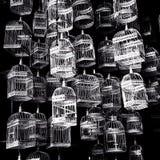 Διάφορα κλουβιά πουλιών Στοκ Εικόνες