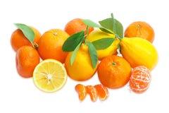 Διάφορα μανταρίνια, λεμόνια και πορτοκάλια σε ένα ελαφρύ backgro Στοκ Φωτογραφίες