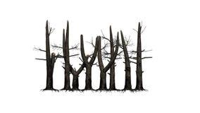 Διάφορα μμένα δέντρα στο άσπρο υπόβαθρο ελεύθερη απεικόνιση δικαιώματος