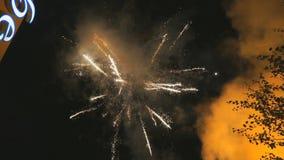 Διάφορα πυροτεχνήματα χρωμάτων στο σκοτεινό ουρανό απόθεμα βίντεο