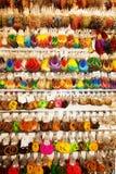 Διάφορα σκουλαρίκια Στοκ Εικόνα