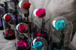 Διάφορα τριαντάφυλλα σε μια φιάλη Μακράς διαρκείας αυξήθηκε συντηρημένος στοκ φωτογραφίες