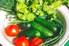 Διάφορα φρέσκα λαχανικά σε ένα δοχείο - ζωηρόχρωμη φρέσκια σαφής σούπα άνοιξη Αγροτική άποψη τοπίου κουζινών τοπ άνωθεν στοκ φωτογραφίες