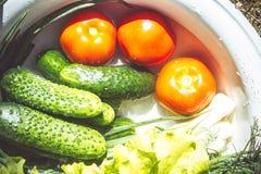 Διάφορα φρέσκα λαχανικά σε ένα δοχείο - ζωηρόχρωμη φρέσκια σαφής σούπα άνοιξη Αγροτική άποψη τοπίου κουζινών τοπ άνωθεν κλείστε στοκ εικόνες