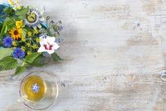 Διάφορα φρέσκα χορτάρια και βοτανικό τσάι στον ξύλινο πίνακα brith φρέσκες ιατρικές εγκαταστάσεις και στη δέσμη Να προετοιμαστεί  Στοκ εικόνες με δικαίωμα ελεύθερης χρήσης