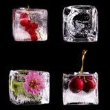 Διάφορα φρούτα και λουλούδι στους κύβους πάγου Στοκ φωτογραφία με δικαίωμα ελεύθερης χρήσης
