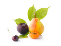 Διάφορα φρούτα στο άσπρο υπόβαθρο Στοκ Εικόνα