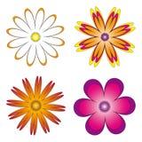 Διάφορες ενσωματώσεις των λουλουδιών Ελεύθερη απεικόνιση δικαιώματος