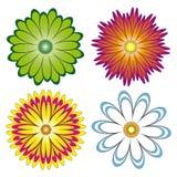Διάφορες επιλογές των λουλουδιών. διανυσματική απεικόνιση