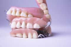 Διάφορες οδοντοστοιχίες στοκ εικόνα με δικαίωμα ελεύθερης χρήσης