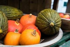 Διάφορες ώριμες κολοκύθες που επιδεικνύονται κατά τη διάρκεια της αγοράς αγροτών Φρέσκες βιο κολοκύθες στο μανάβικο Στοκ Εικόνες