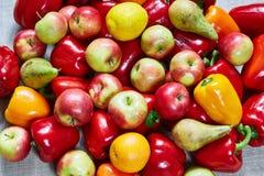 Διάφορη πάπρικα, αχλάδι, μήλο, πορτοκάλι σε έναν γκρίζο καμβά Στοκ Εικόνα