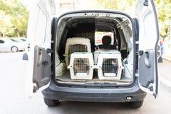 Διάφοροι μεταφορείς αερογραμμών κατοικίδιων ζώων σε ένα αυτοκίνητο, έτοιμο για το tranportation στοκ φωτογραφίες