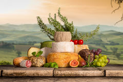Διάφοροι τύποι ιταλικών τυριών στοκ εικόνες