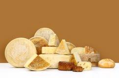 Διάφοροι τύποι τυριών με το ψωμί στοκ φωτογραφίες