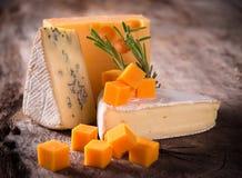 Διάφοροι τύποι τυριών στοκ φωτογραφία με δικαίωμα ελεύθερης χρήσης