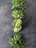 Διάφοροι τύποι φύλλων σαλάτας σε ένα γκρίζο υπόβαθρο στοκ εικόνα
