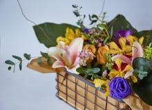 Διάφορος των λουλουδιών στο κιβώτιο στοκ εικόνες με δικαίωμα ελεύθερης χρήσης