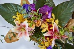 Διάφορος των λουλουδιών στο κιβώτιο στοκ φωτογραφίες
