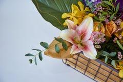 Διάφορος των λουλουδιών στο κιβώτιο στοκ εικόνα με δικαίωμα ελεύθερης χρήσης