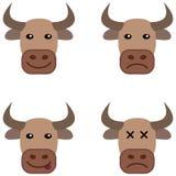 Διάφορο κεφάλι αγελάδων Στοκ Εικόνα