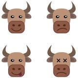 Διάφορο κεφάλι αγελάδων Στοκ εικόνα με δικαίωμα ελεύθερης χρήσης