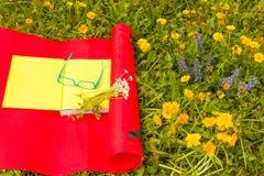 Διαβάστε ένα βιβλίο σε ένα λιβάδι των άγριων ζωηρόχρωμων λουλουδιών Στοκ φωτογραφία με δικαίωμα ελεύθερης χρήσης