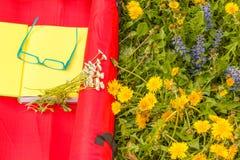 Διαβάστε ένα βιβλίο σε ένα λιβάδι των άγριων ζωηρόχρωμων λουλουδιών Στοκ Εικόνες