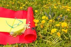 Διαβάστε ένα βιβλίο σε ένα λιβάδι των άγριων ζωηρόχρωμων λουλουδιών Στοκ φωτογραφίες με δικαίωμα ελεύθερης χρήσης