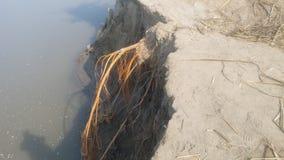 Διαβρωμένη άποψη τράπεζας Ινδών ποταμών στοκ φωτογραφία με δικαίωμα ελεύθερης χρήσης