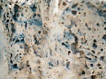 Διαβρωμένοι βράχοι με τις τρύπες εκτός από τη θάλασσα Στοκ Φωτογραφίες