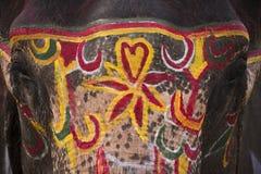 Διαγωνισμός ομορφιάς - φεστιβάλ ελεφάντων, Chitwan 2013, Νεπάλ Στοκ Φωτογραφίες