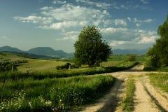 διαγώνιος δρόμος αγροτι Στοκ Εικόνες