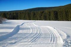 Διαγώνιος να κάνει σκι χωρών τρόπος Στοκ Φωτογραφίες