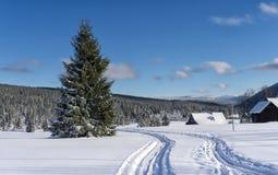 Διαγώνιο ίχνος σκι χωρών στο χωριουδάκι Jizerka, βουνά Jizera στοκ εικόνα με δικαίωμα ελεύθερης χρήσης