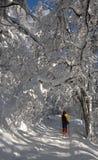 διαγώνιο να κάνει σκι χωρώ&nu Στοκ Φωτογραφία