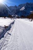 Διαγώνιο να κάνει σκι χώρας ίχνος - Val Saisera Ιταλία Στοκ Εικόνες