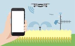 Διαδίκτυο των πραγμάτων στη γεωργία Στοκ Εικόνες