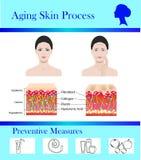 Διαδικασία δερμάτων γήρανσης και προληπτικά tipps, διανυσματική απεικόνιση ελεύθερη απεικόνιση δικαιώματος