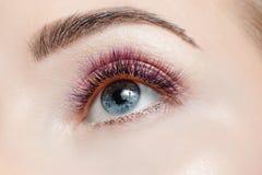 Διαδικασία επέκτασης Eyelash στοκ φωτογραφία με δικαίωμα ελεύθερης χρήσης
